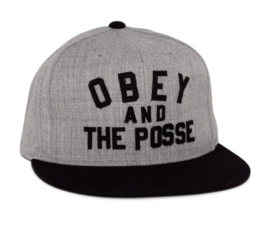 41c9417cb11 Obey And The Posse Snapback Cap (Heather Grey Black) - Consortium.