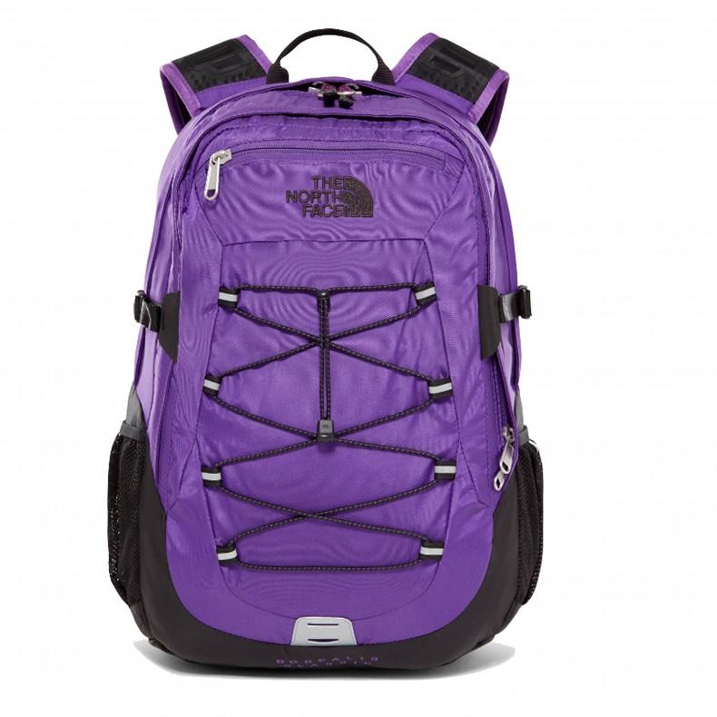 b5a1cfe80 The North Face Borealis Classic Backpack (Tillandsia Purple/TNF Black)